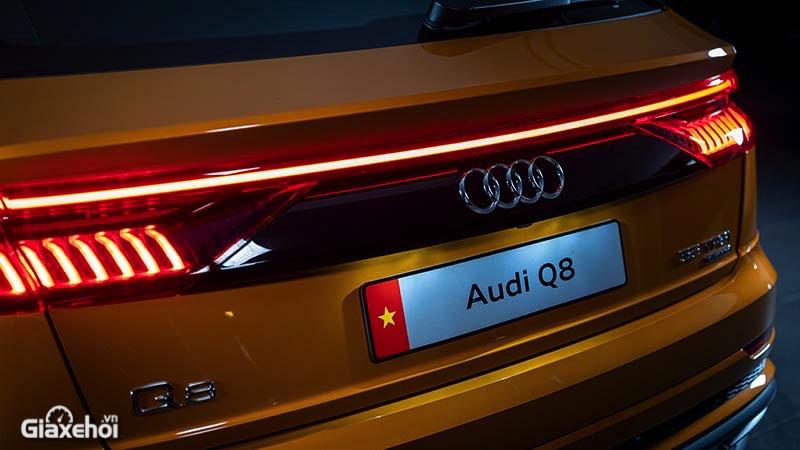Cum-den-hau-xe-Audi-Q8-2021-TFSI-55-quattro-Giaxehoi-vn-1